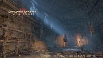 Dragon's Dogma (445)