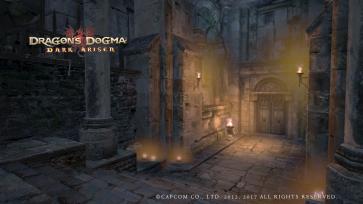 Dragon's Dogma (454)