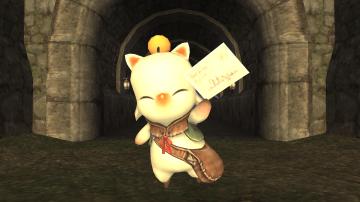 Final Fantasy XI (102)