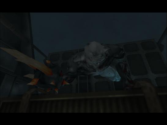 Biohazard Code Veronica DC (2132)