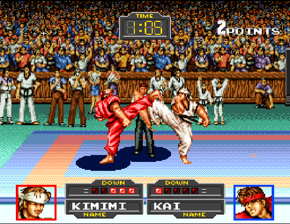 Taekwondo SFC (1321)
