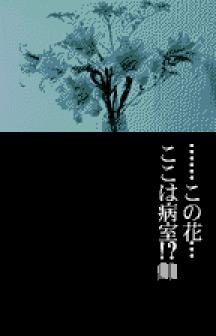 Terrors 2 WonderSwan Color (301)