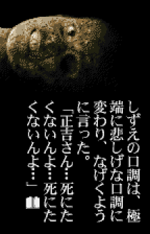 Terrors 2 WonderSwan Color (378)